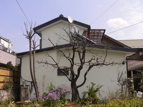 外壁の塗装工事とベランダ屋根の設置|埼玉県川越市のK様邸