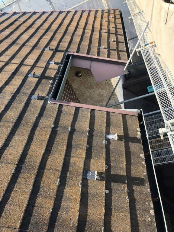 苔が発生している屋根